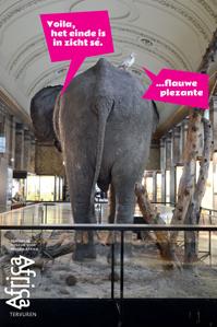 Gratis slotweekend Afrikamuseum Tervuren